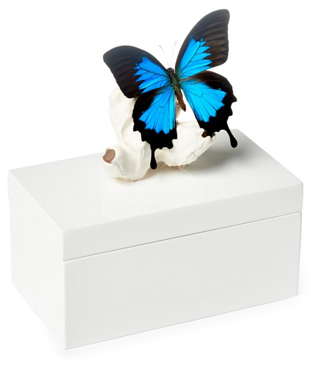 Large White Box w/ Butterfly on Barnacle