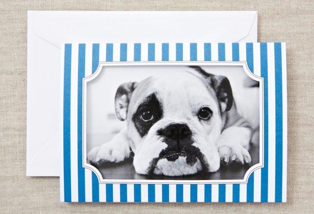 S/16 Photo Cards, Blue Stripes