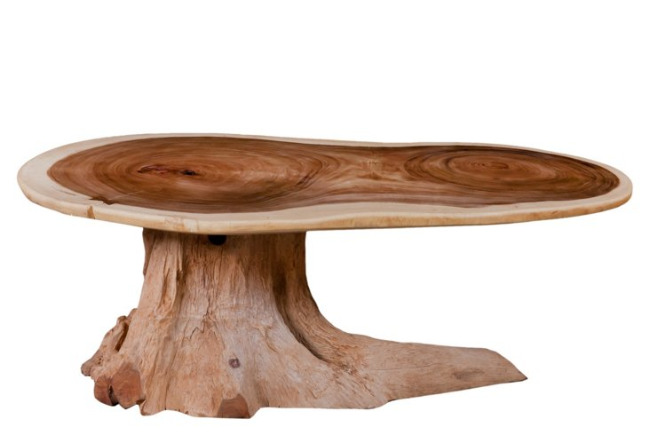 Chamcha Coffee Table w/ Root Base
