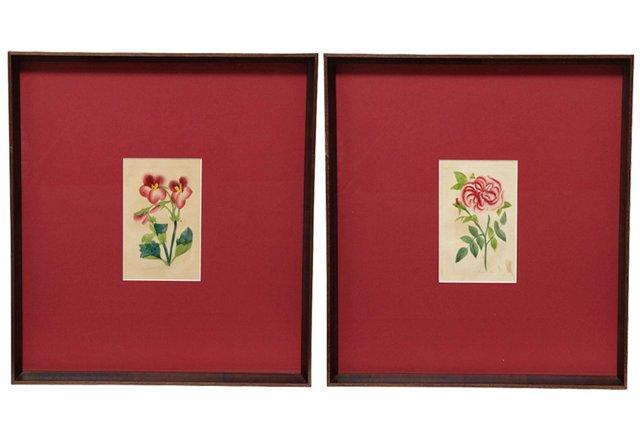 Antique Red Matte Botanical Prints, S/2
