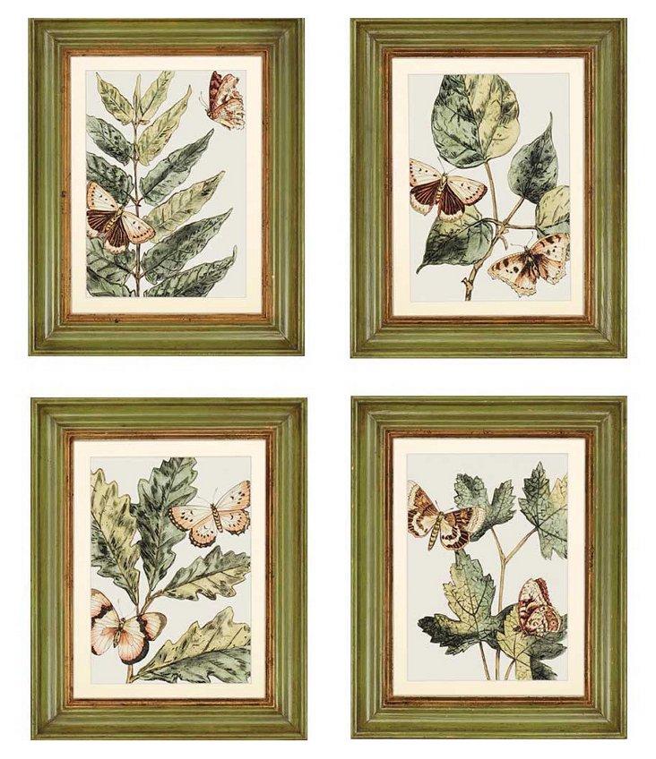 Butterflies, Set of 4