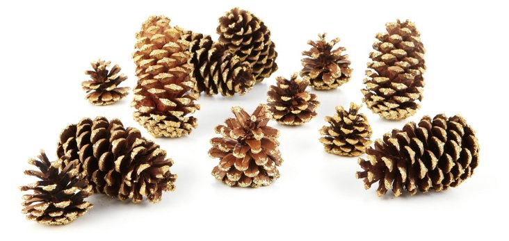 """S/24 5"""" Sparkle-Tipped Cones, Dried"""