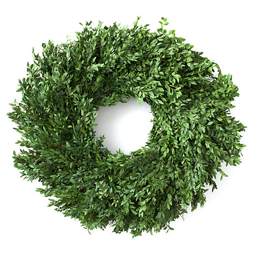 Boxwood Wreath, Preserved