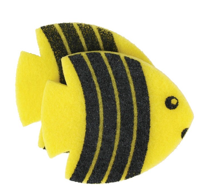 S/4 Angelfish Sponges