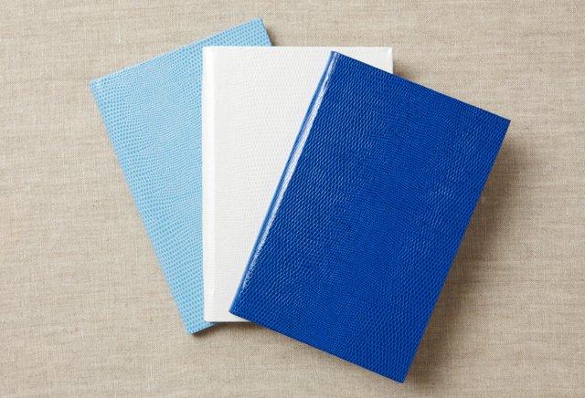 S/3 Journals/Notebooks, Blues