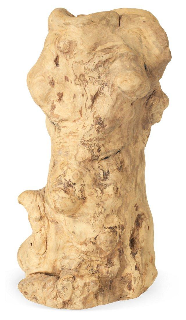Gnarled Teak Root Vase II