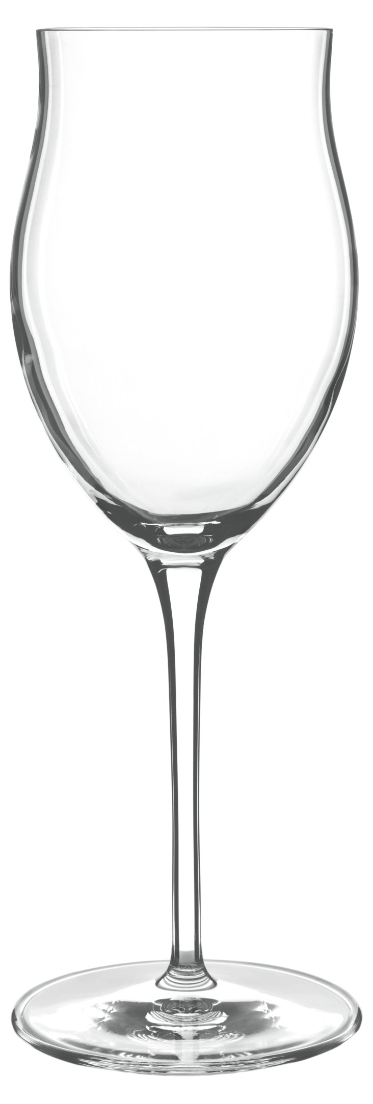 S/6 Tulip Wineglasses, 11.75 oz