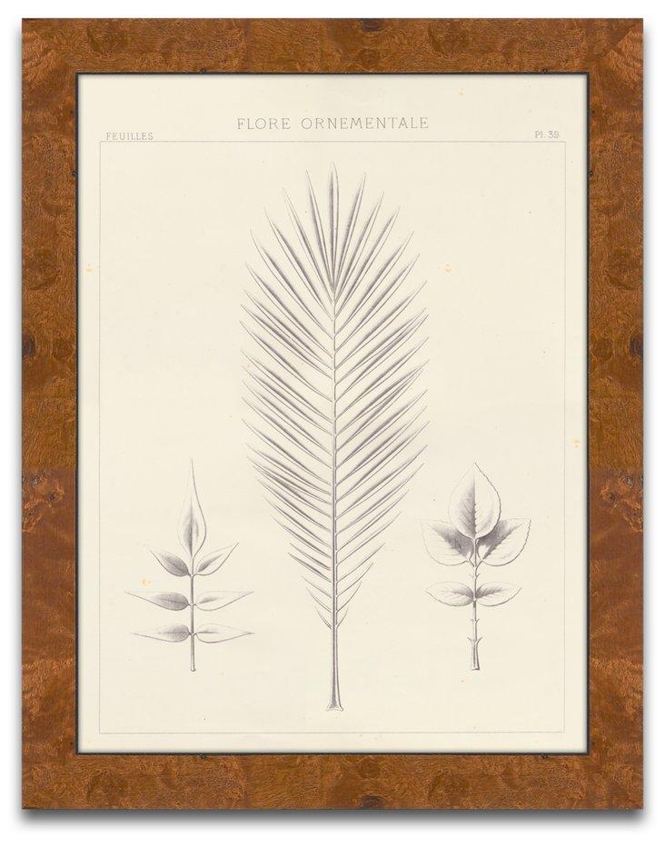 Leaf Ornamentale I