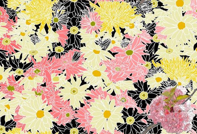 Pink & Black Flower Power