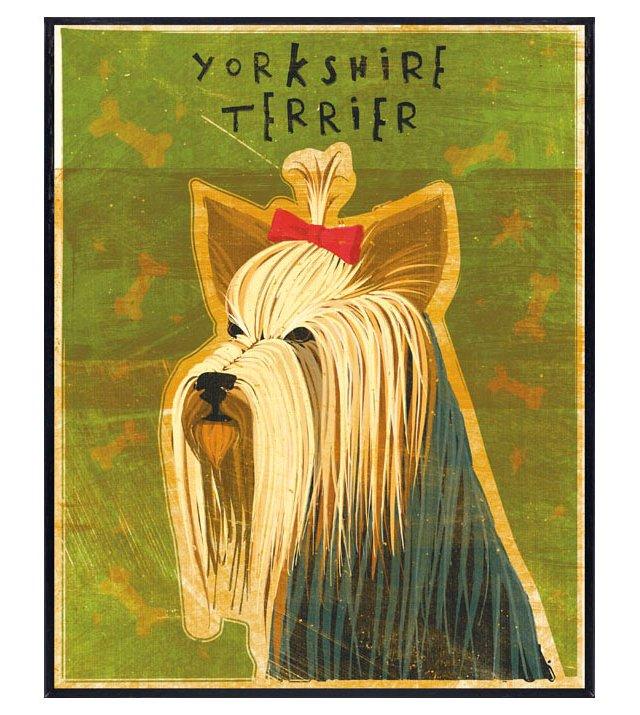 John Golden, Yorkshire Terrier