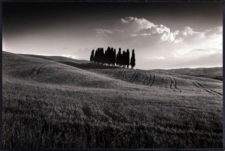 Michael Hudson, Cypress Cluster