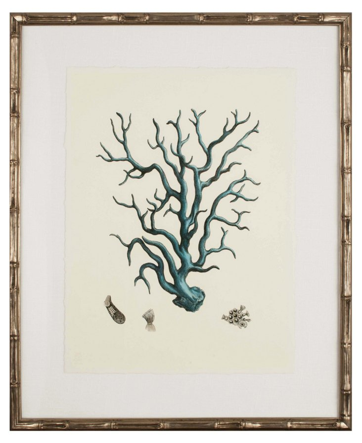 Turquoise Coral I