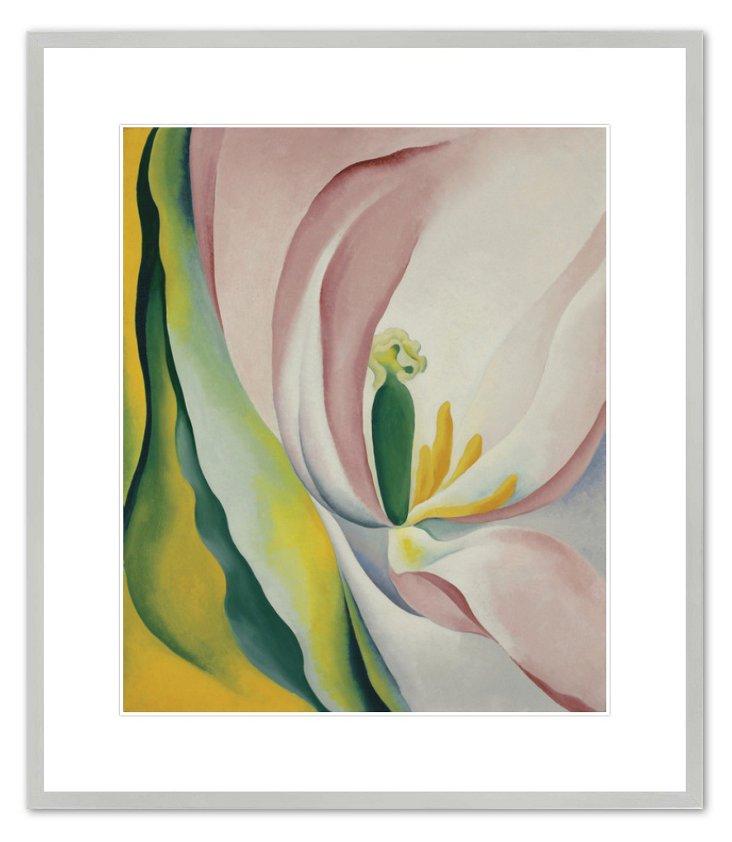 Georgia O'Keeffe, Pink Tulip, 1926