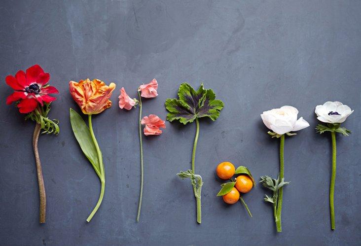 Mason Stefl, Floral Study 2