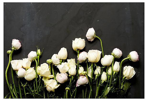 Mason Stefl, Floral Study 5