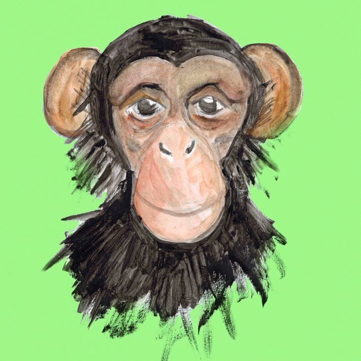 Lauren Rowinski, Green Monkey