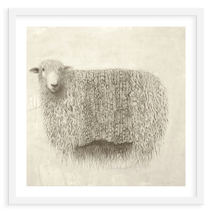 Meagan Donegan, Sheep
