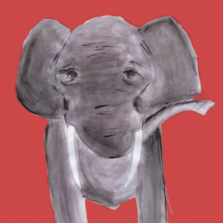 Lauren Rowinski, Red Elephant