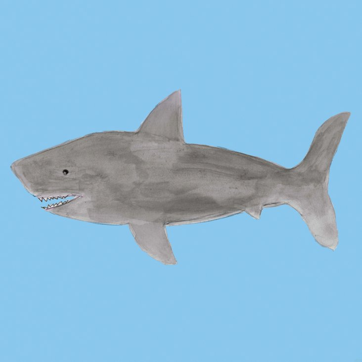 Lauren Rowinski, Blue Shark