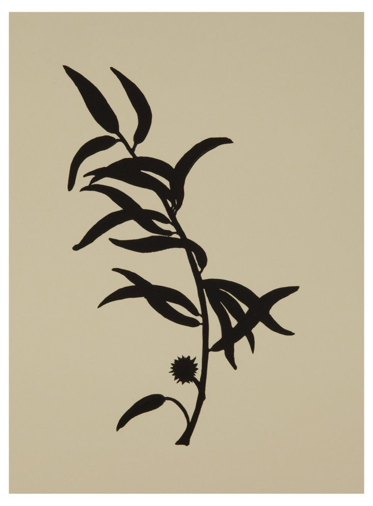Jennifer Ament, Left Eucalyptus Branch