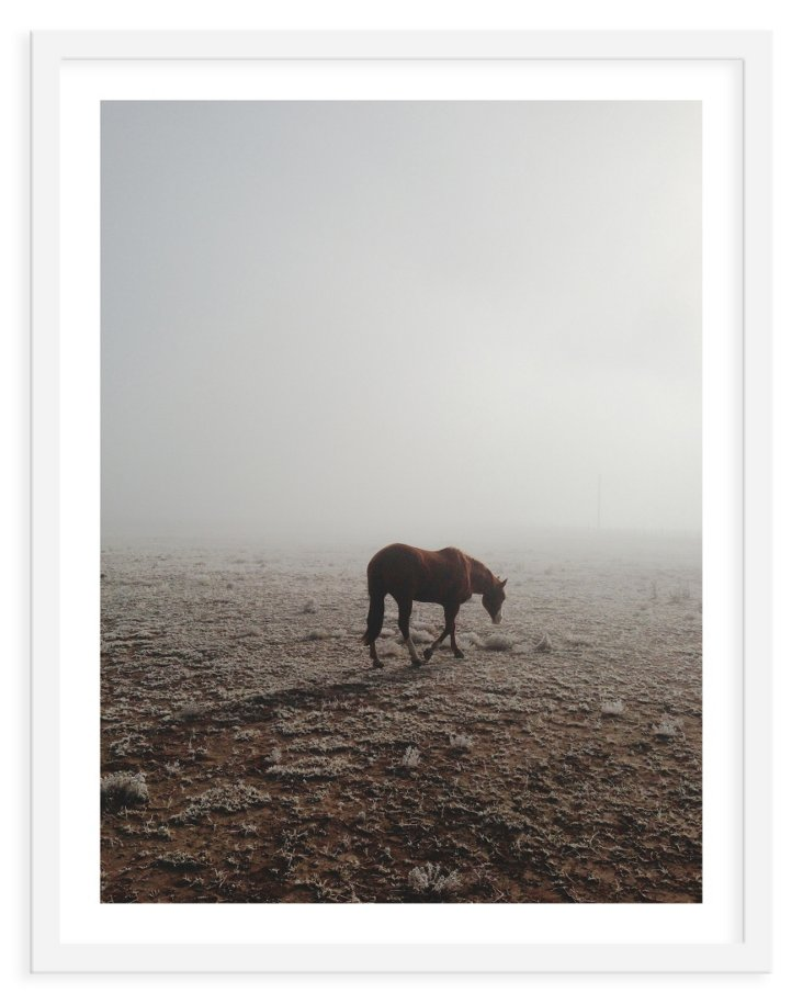 Kevin Russ, Fog Walking Horse