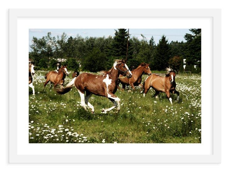 Kevin Russ, Spring Horse Run