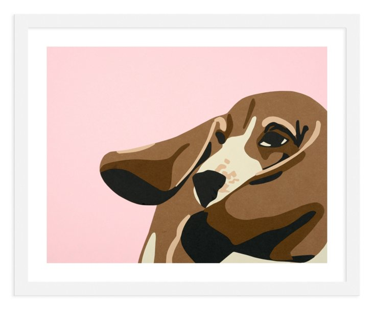 Rankin Willard, Basset Hound