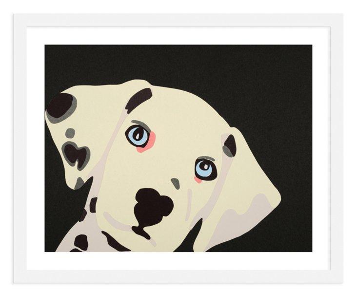 Rankin Willard, Dalmatian