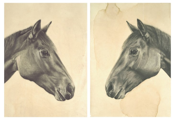 Meagan Donegan, Horse Diptych