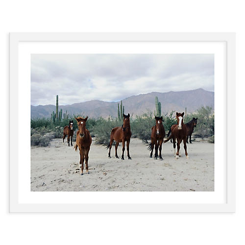 Kevin Russ, Horses in the Desert