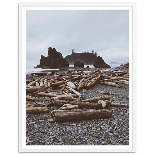 Rocky Beach Driftwood, Kevin Russ