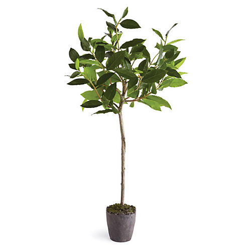 "29"" Bay Leaf Faux Tree, Green/Gray"