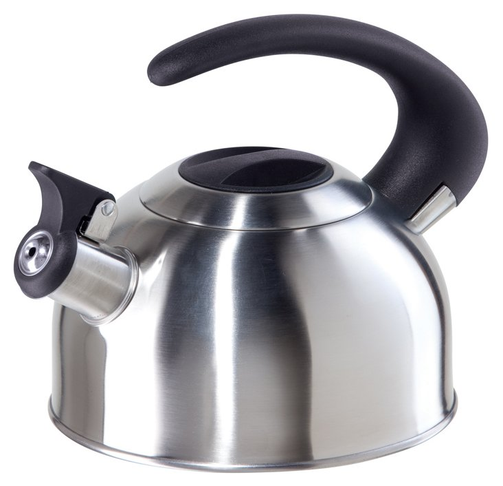 1.9-Liter Arc Tea Kettle, Silver