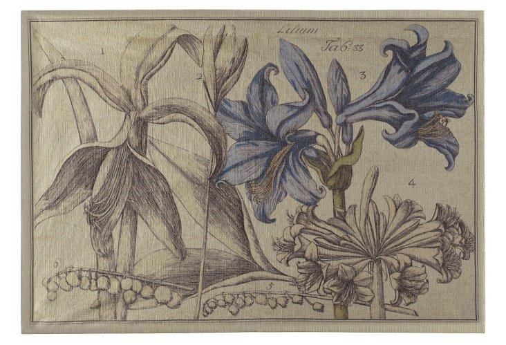 Vintage Botanical Artwork, 53 x 34