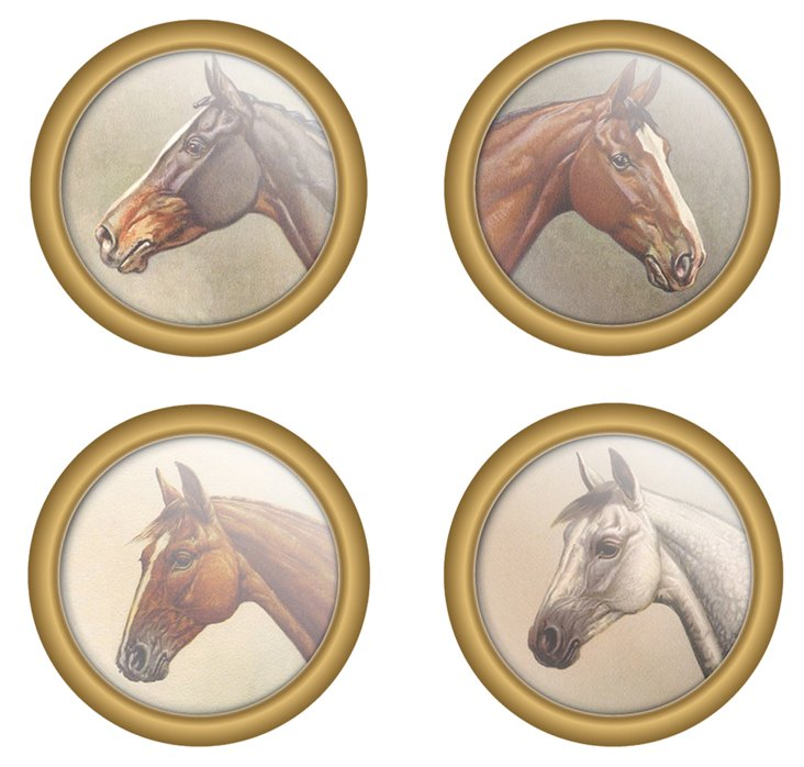 S/30 Paper Drink Coasters, Equine