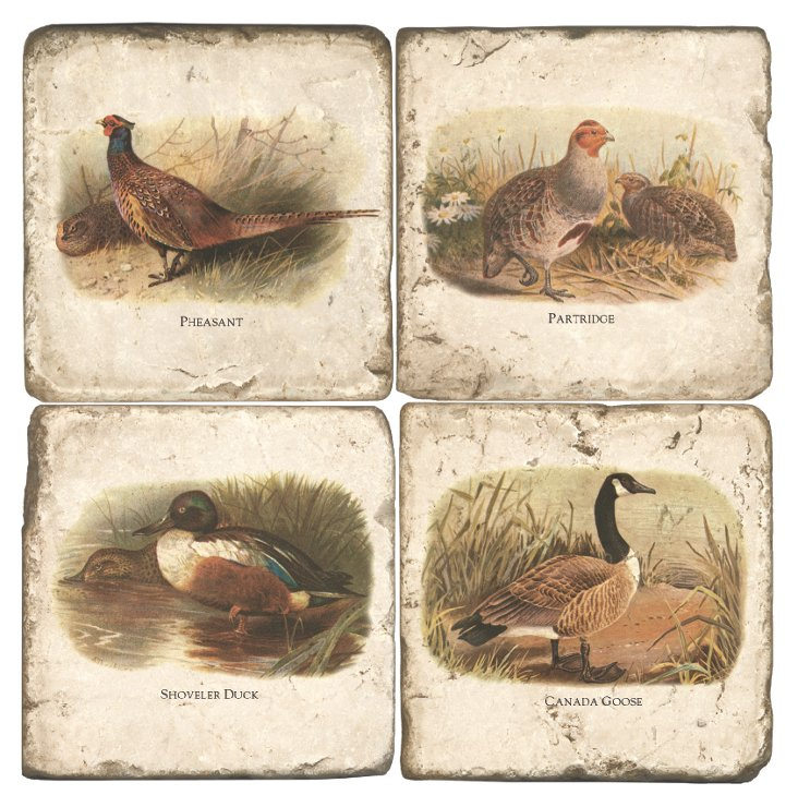 Marble Coasters, Game Birds