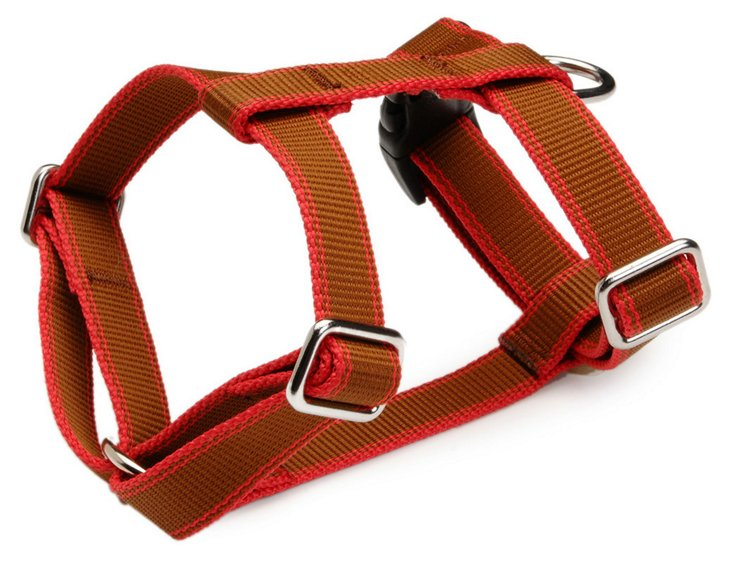 Stripe Hype Harness, Chocolate