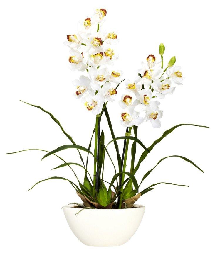 """30"""" Cymbidium in Vase, Faux"""