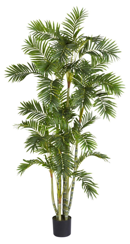6' Carolina Areca Palm Tree, Faux