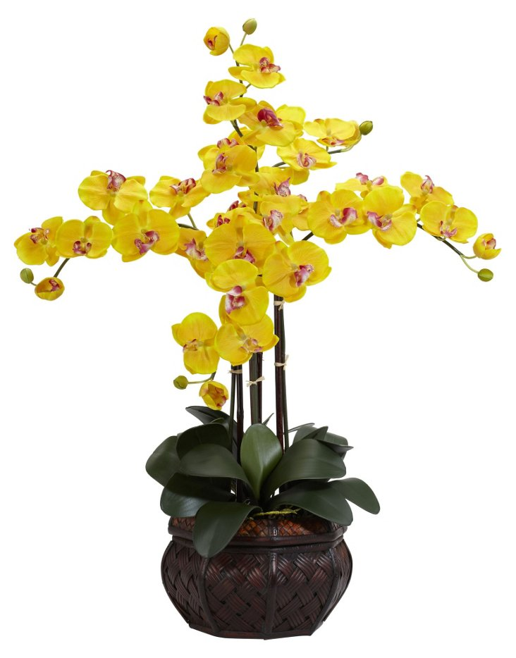 """31"""" Orchid in Leather Planter, Faux"""