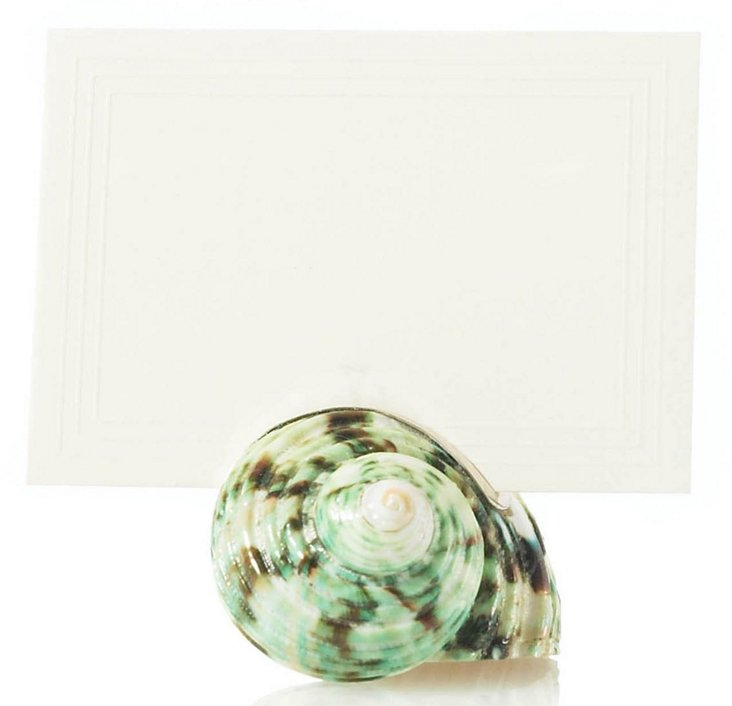 Turban Shell Place Card Holder w/ SS