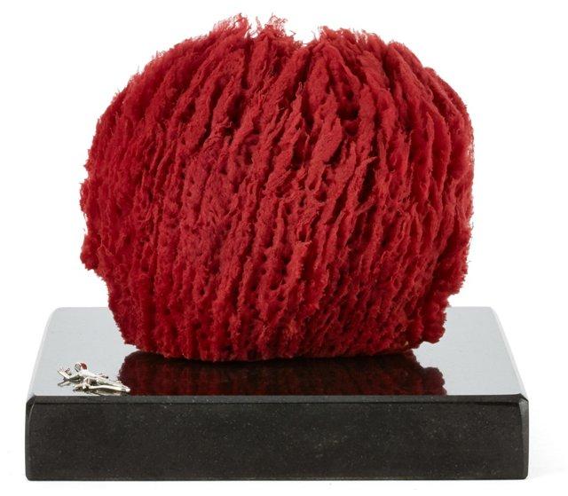 Glove Sponge on Granite, Red