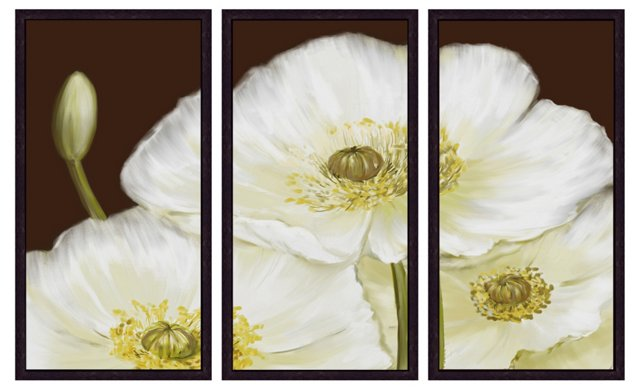 White Poppy Triptych