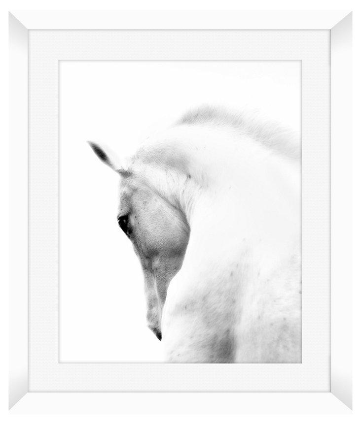 White Horse Print II