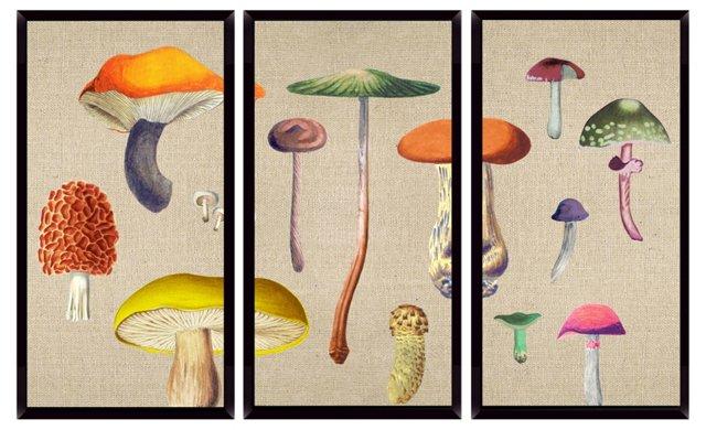 Di Fonzo, Mushroom Mini Triptych