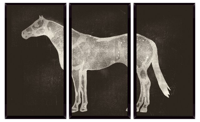 Horse X-Ray Mini Triptych
