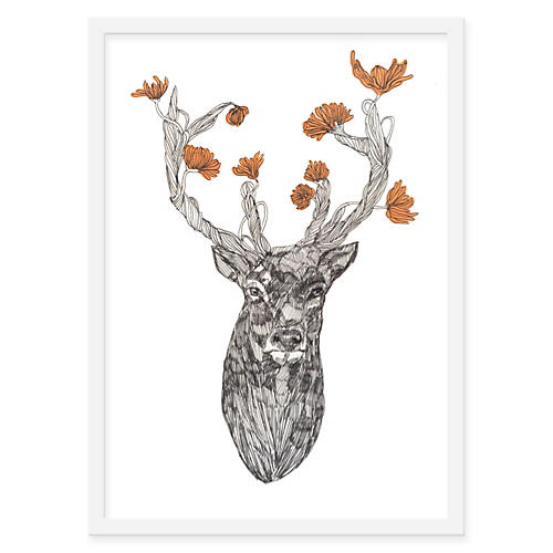 Jaybird Illustration, Deer