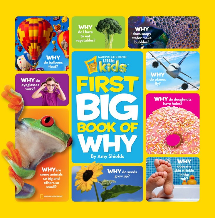 First Big Book of Why