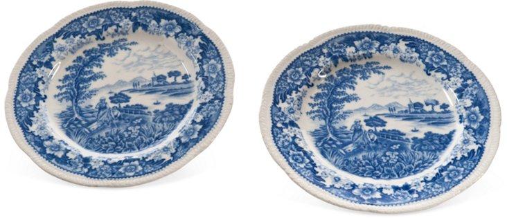 Ironstone Plates, Pair