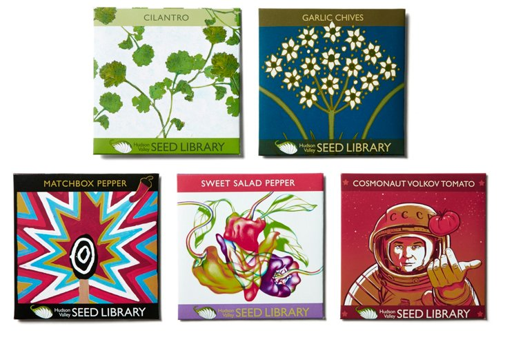 Asst. of 5 Salsa Lover's Seed Packets
